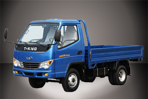1 Ton Light Truck (Gasoline Engine) --ZB1021ADB3S